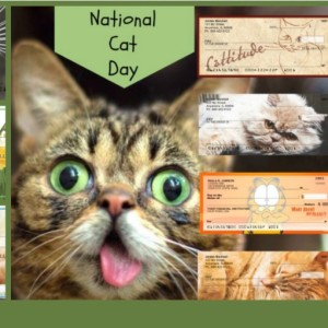 Cat Checks for National Car Day