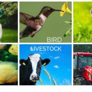 HorseLoverZ Animal Supply Liquidation Sale